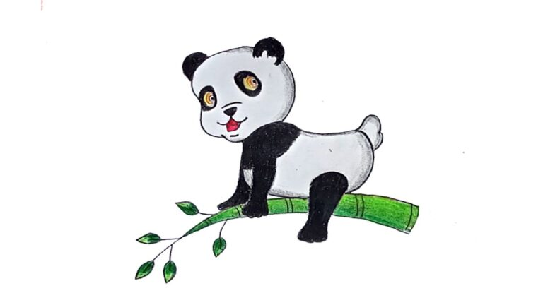 how to draw a panda easy 2021