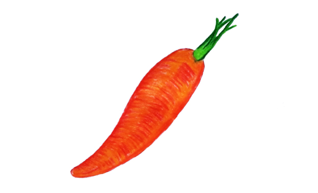 How to draw a Carrot 2021